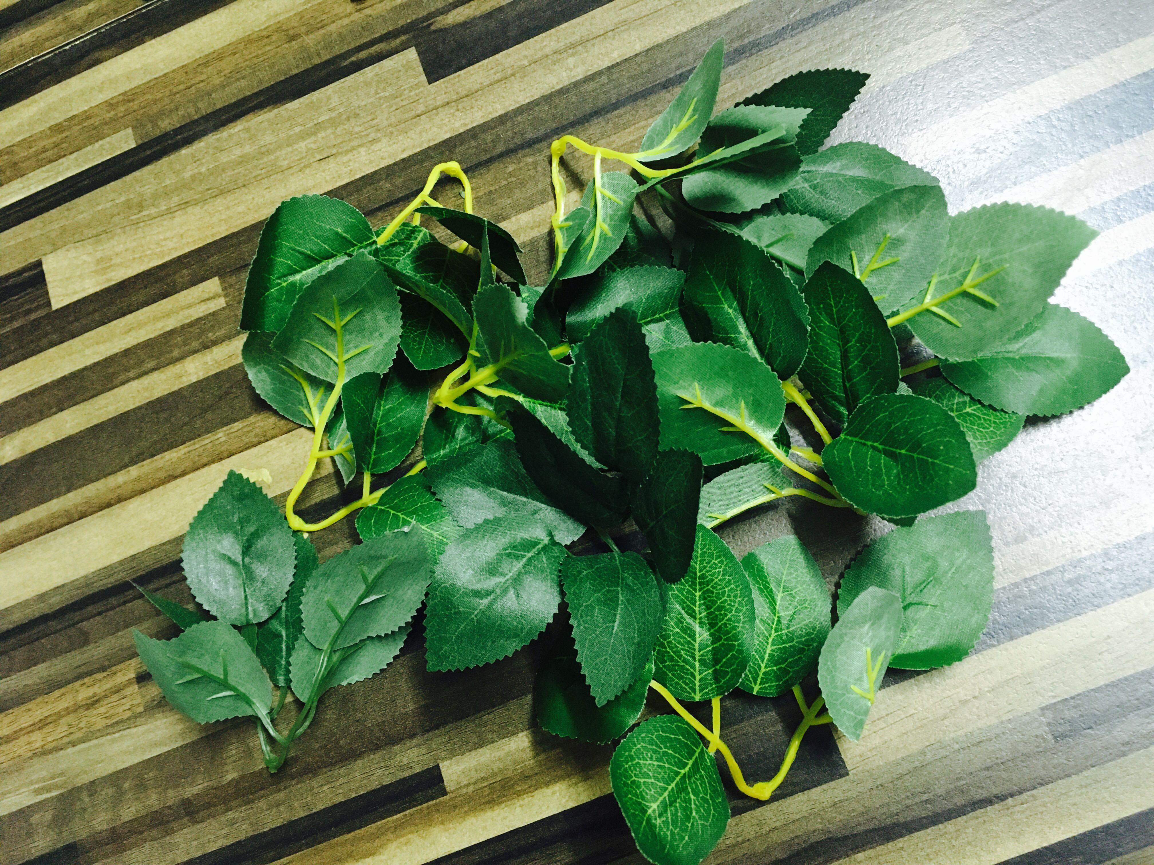 Artificial Leaves ( 手工叶子 )