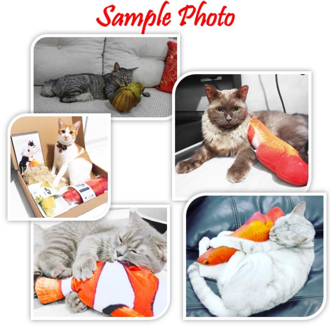 [FREE Shipping]Catnip Toy (Crown Fish/Red Dragon Fish)