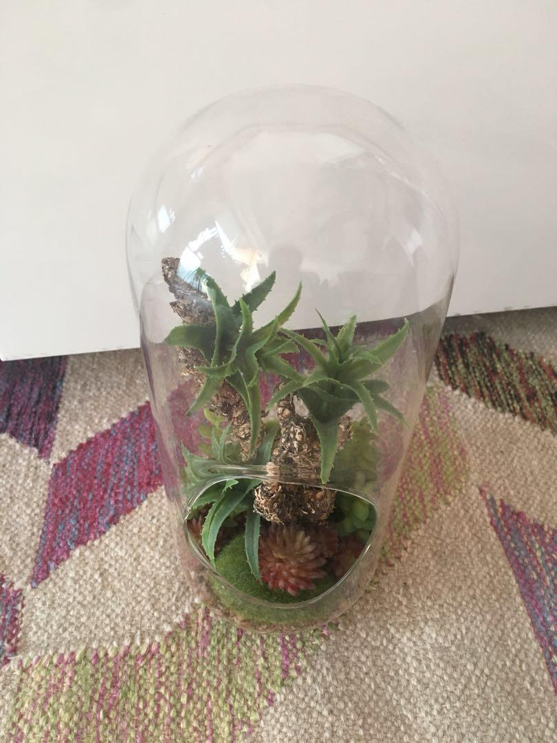 Artificial Fake Terrarium PLANT Franc Franc