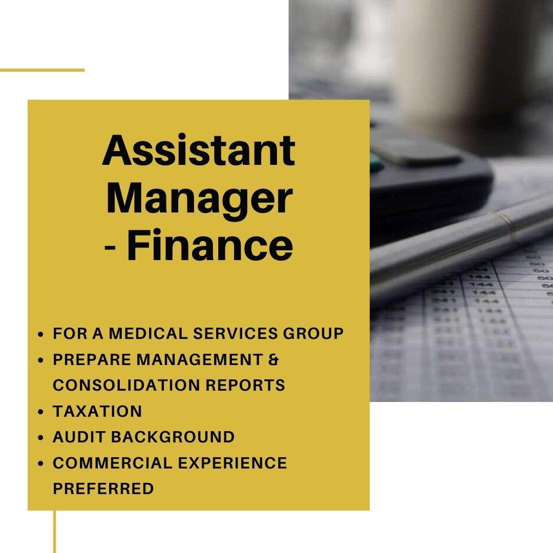 Assistant Finance Manager
