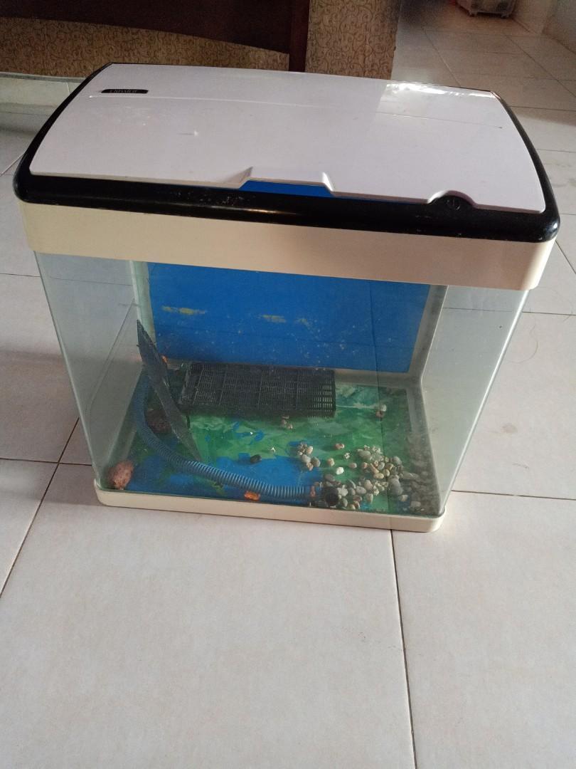 fish tank and led light