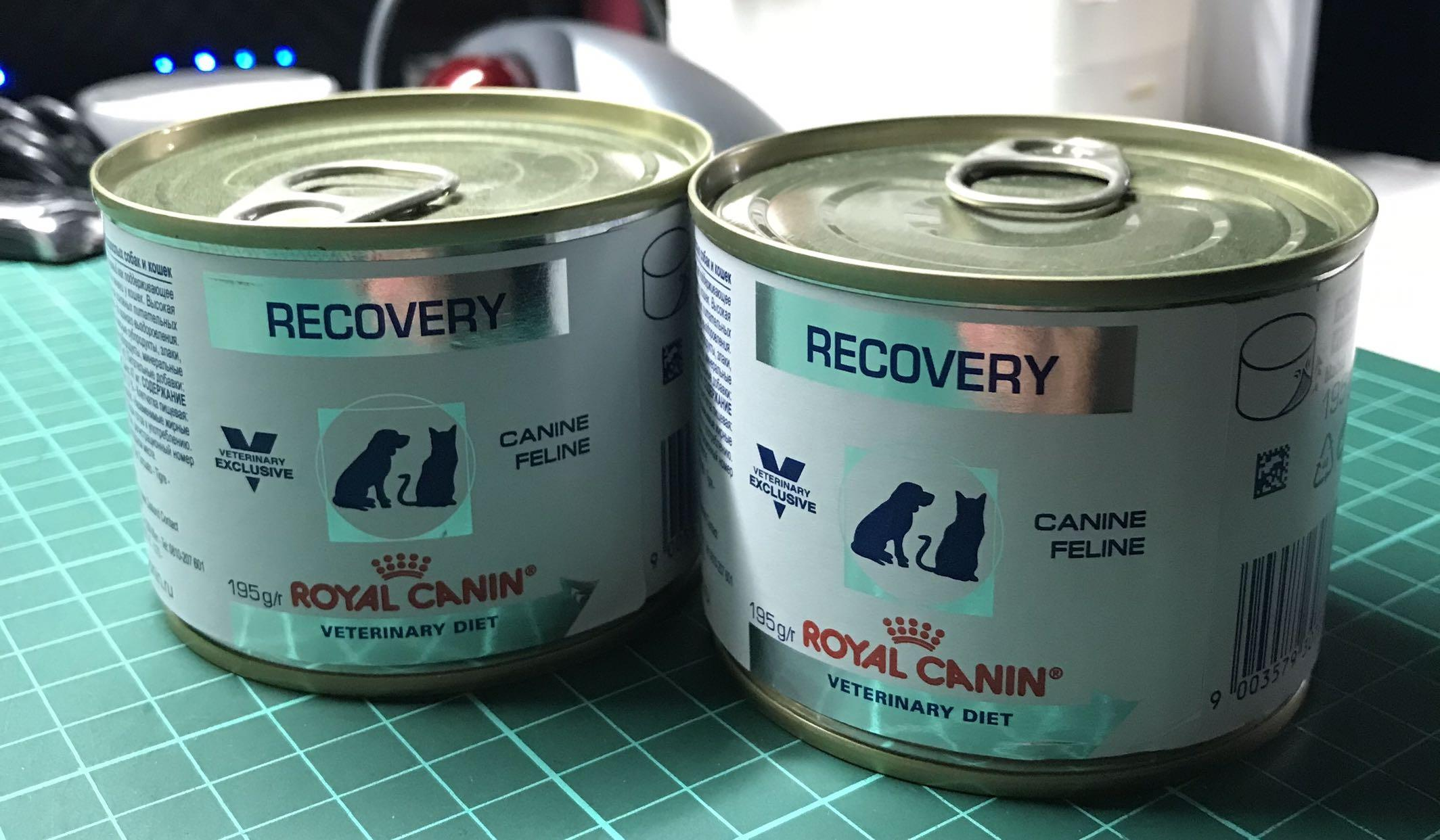 Royal Canin Recovery For Dogs and Cats 法國皇家貓/狗隻康復支援營養罐頭濕糧 195g兩罐