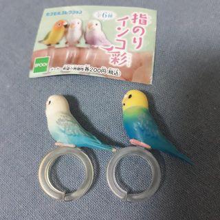 鸚鵡扭蛋轉蛋