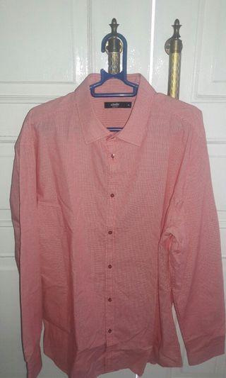 Kemeja Pria Pink Branded Schoeller/Mens Outfit Pink Branded