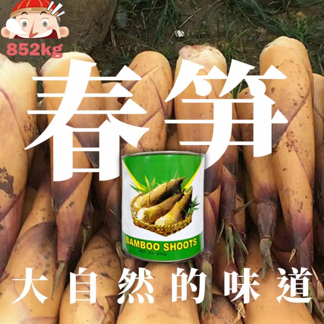 高龍 - 春筍罐頭 850g 福建農家特產! 大自然的味道~!