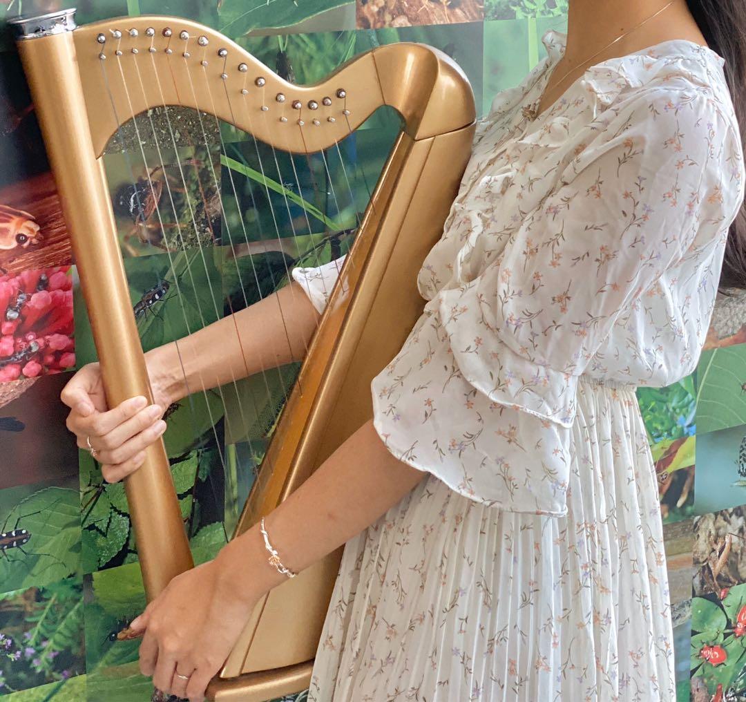 Harp 小豎琴優惠課程