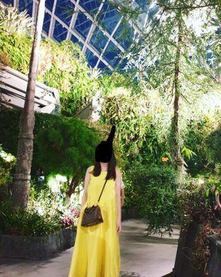 jii gloria yellow midi loose dress