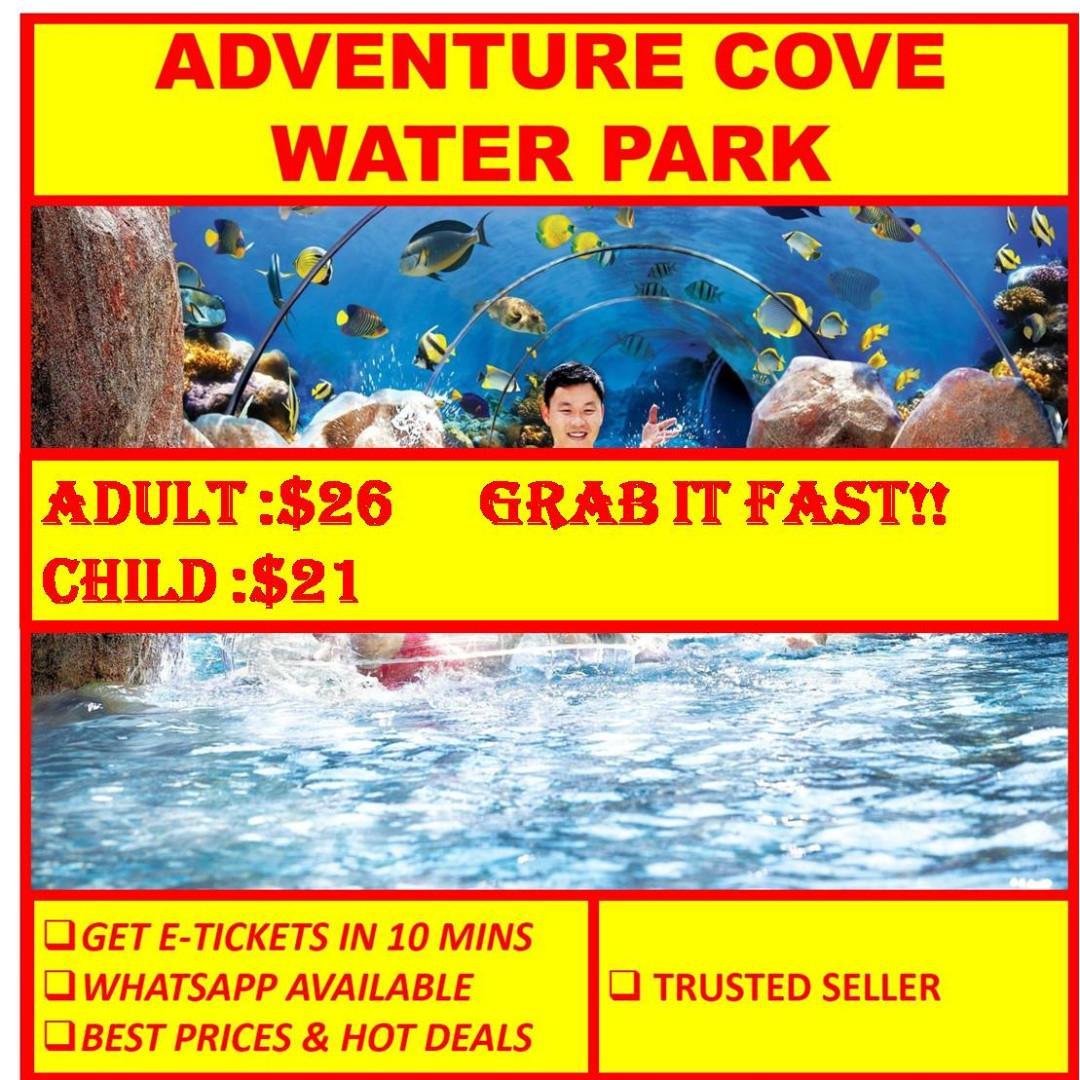 ADVENTURE COVE WATER PARK // E-TICKET