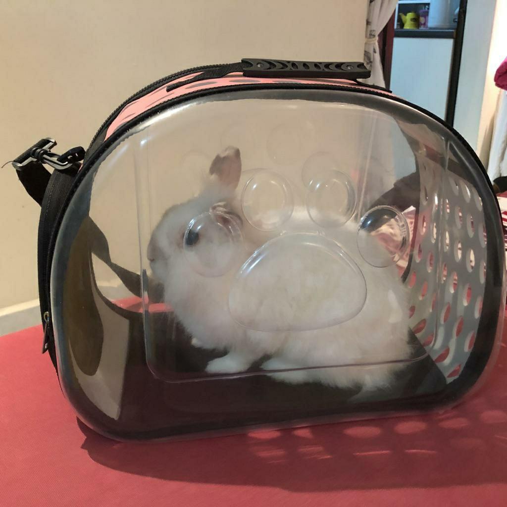 Pet Dog Cat Travel Carrier Bag/ Car Bag/ Folding Bag/ Travel Bag/ Sling Bag
