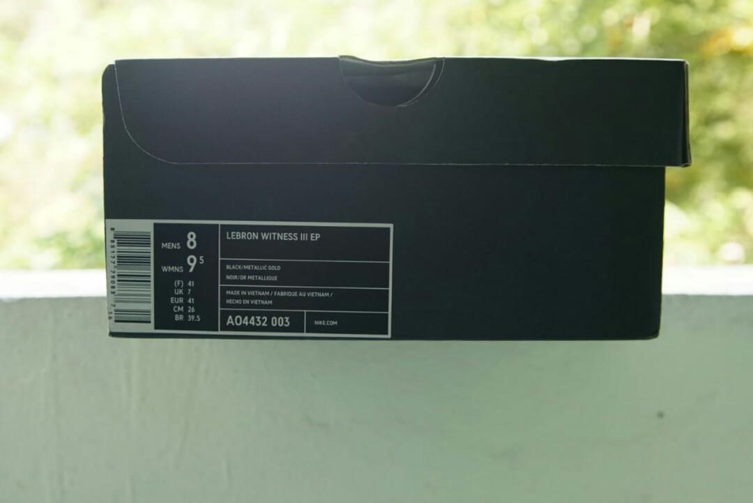 Nike Lebron Witness III EP