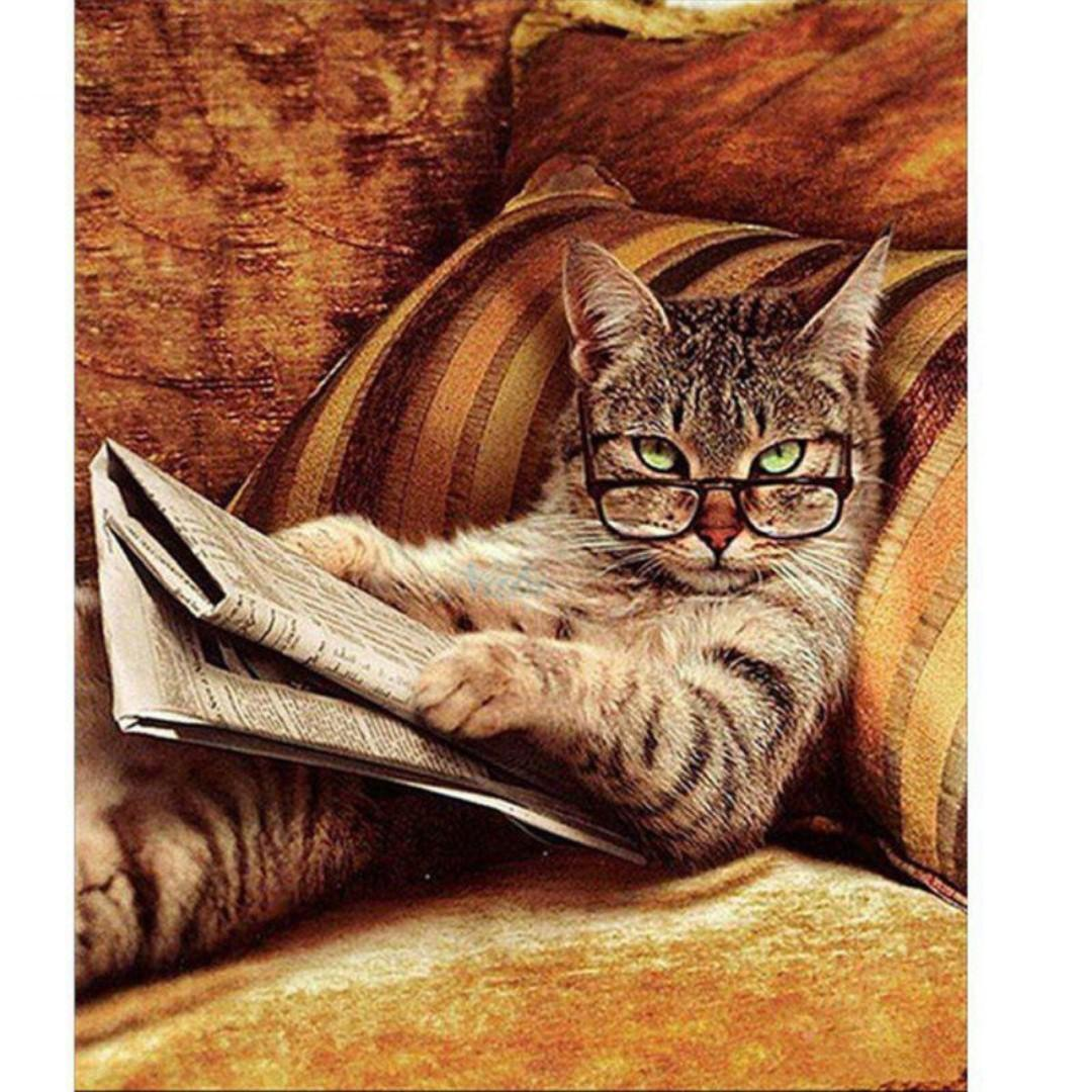 Art Therapy   Reading Cat DIY Painting By Number-Canvas Only