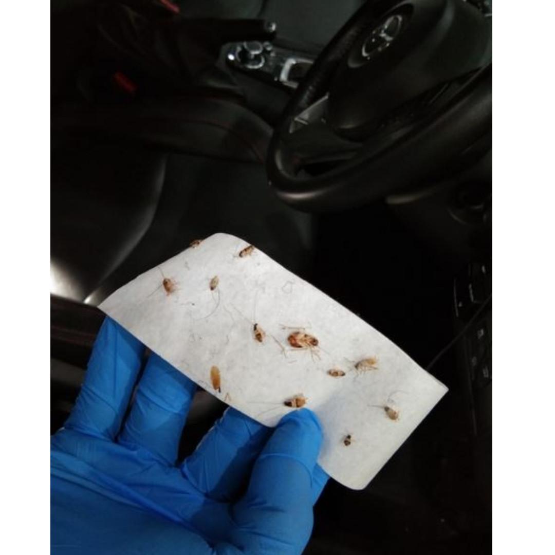Professional Car Interior Detailing / Fumigation / Sanitization / Ozoniser (7 Stage)