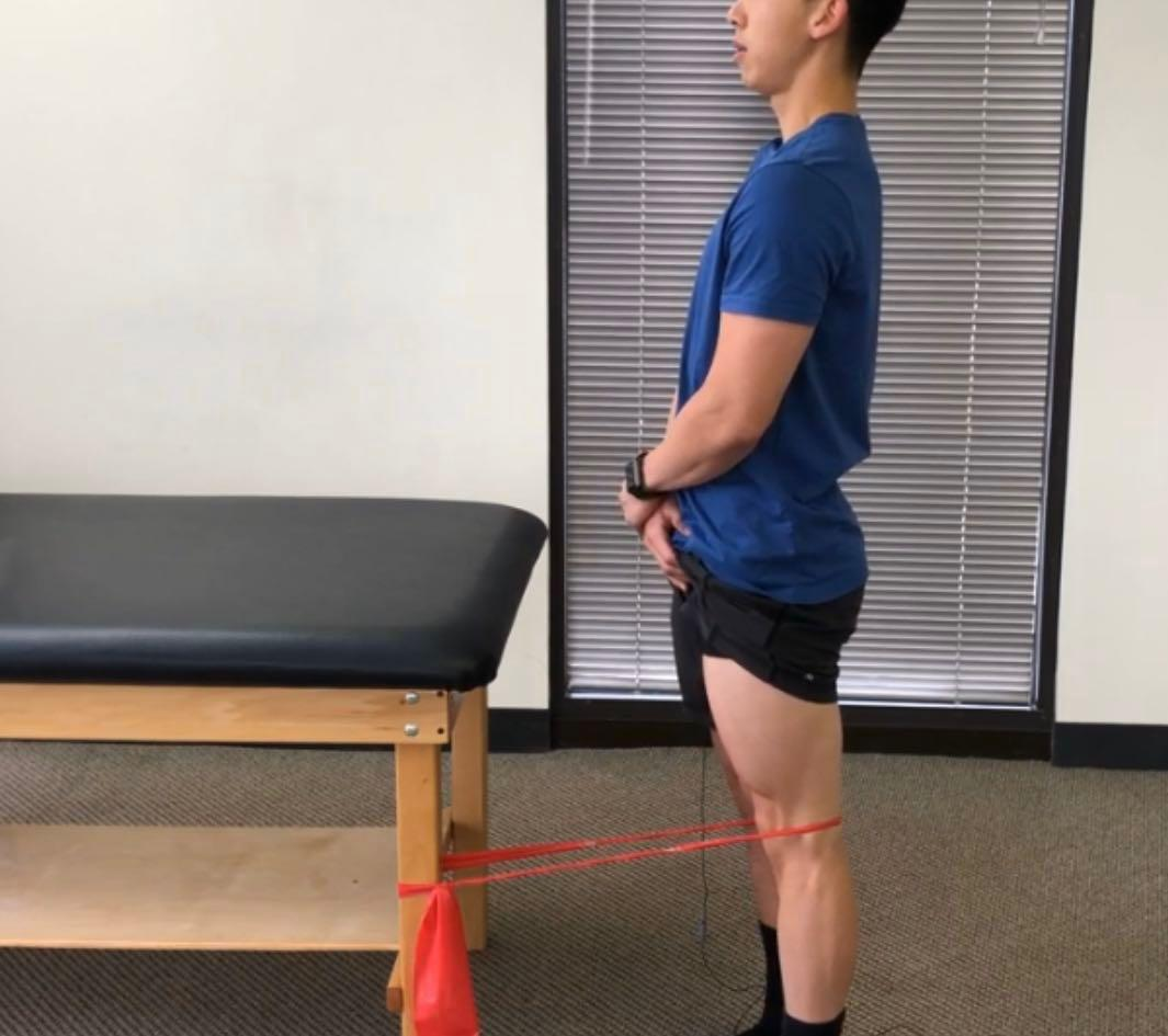 Rehab & Physio services