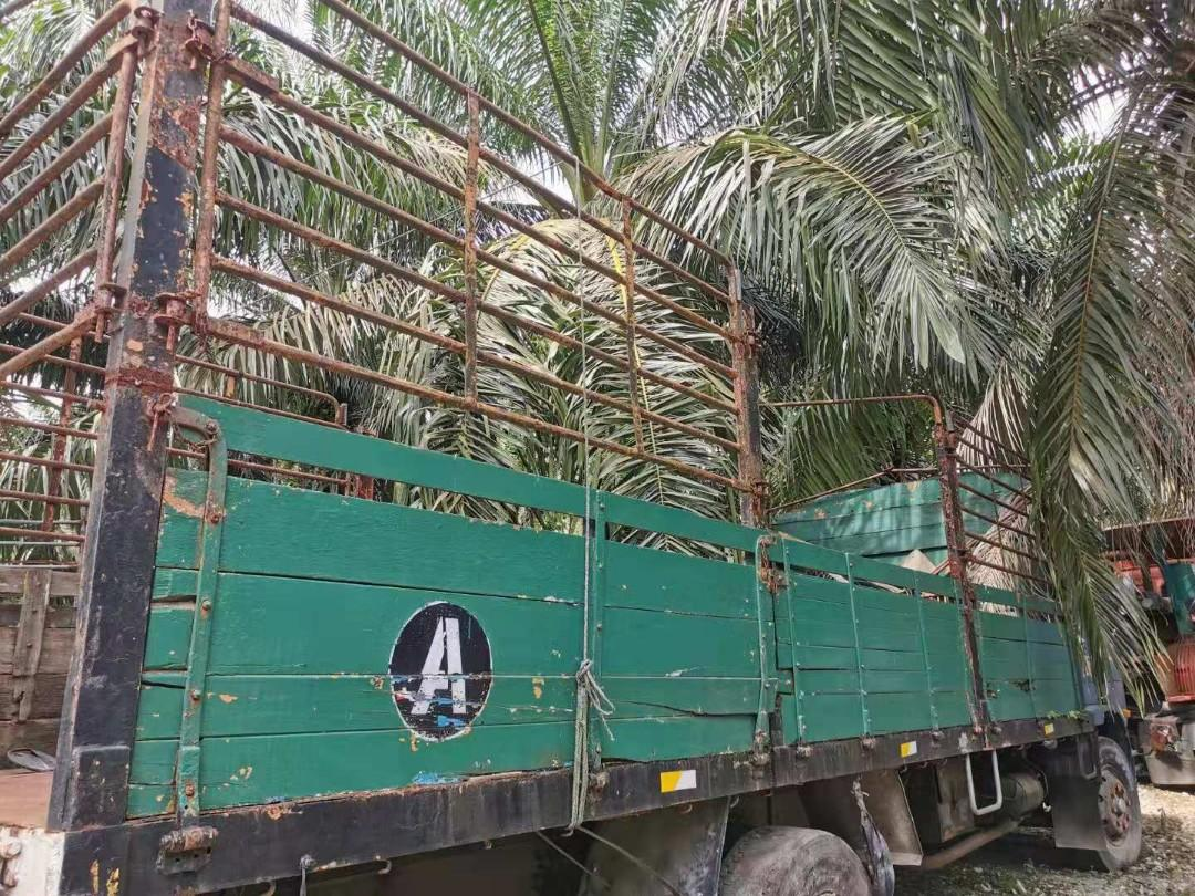LORRY BADAN - WOODEN BODY LORRY WITH STEEL RAILING & FLOOR