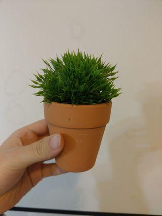 假盆栽 假植物