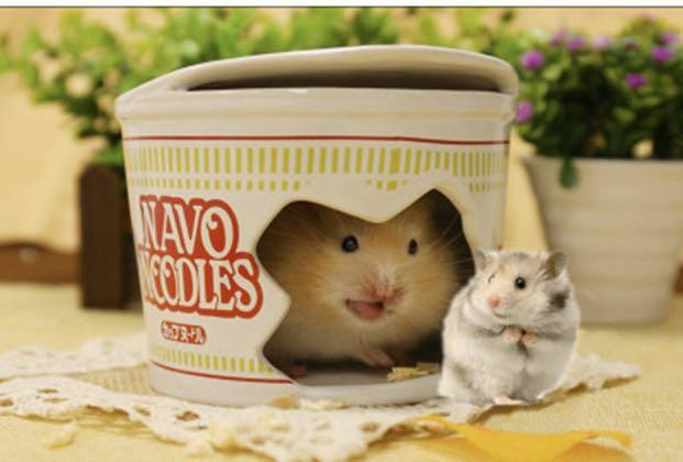 Hamster noodles ceramic hideout