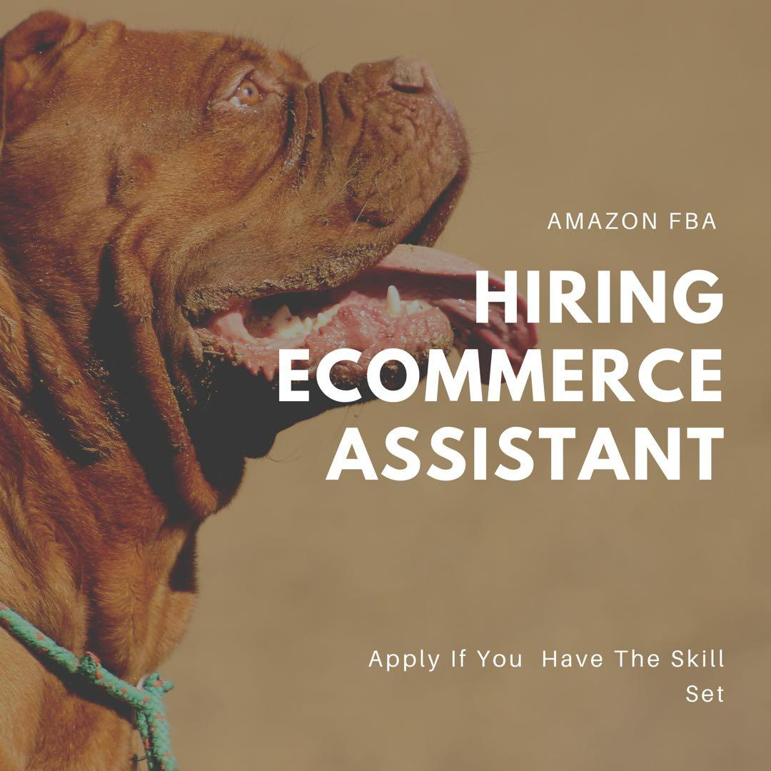 Hiring Digital , E-commerce and Listing Assistants