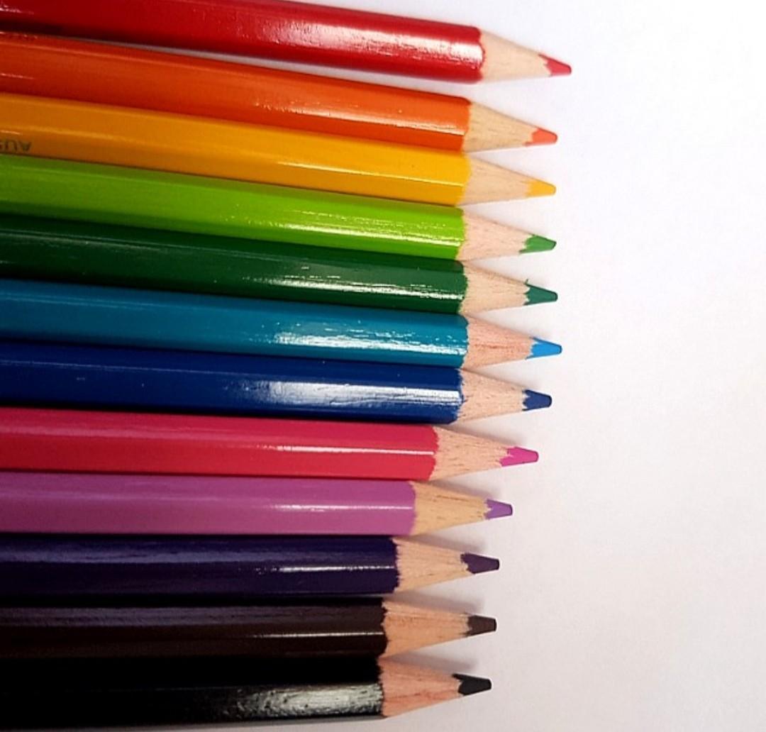 🆕️STAEDTLER - Australia's Heritage Series-Coloured Pencils (12pk)