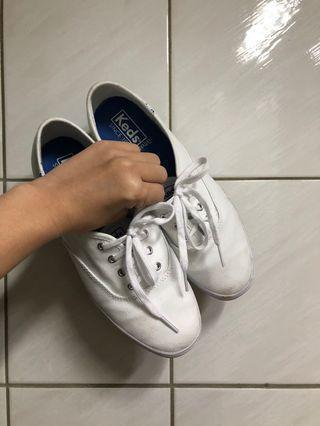 Keds 小白鞋 帆布鞋
