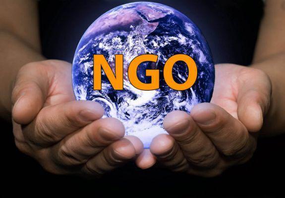 招聘非政府組織人選(NGO)