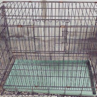 狗籠 寵物籠 高雄自取