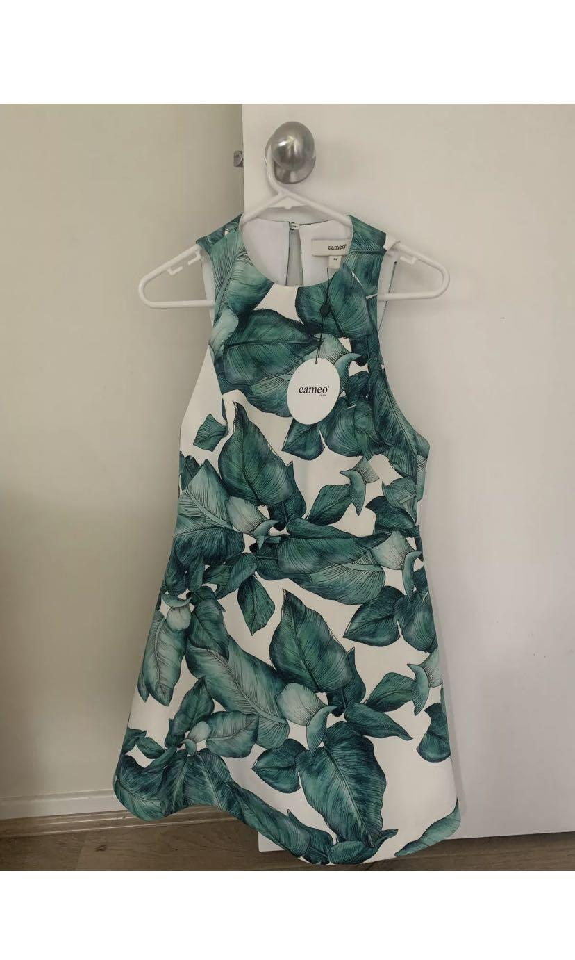 Cameo Collective Dress *BNWT* 'Warm Thoughts Dress' Lily Palm MEDIUM Green White. NEVER WORN.