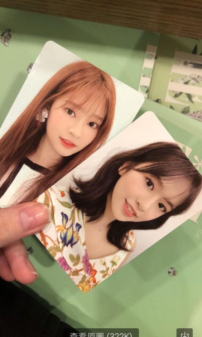 wtt izone photocard trade to any member 🌻chaeyeon first