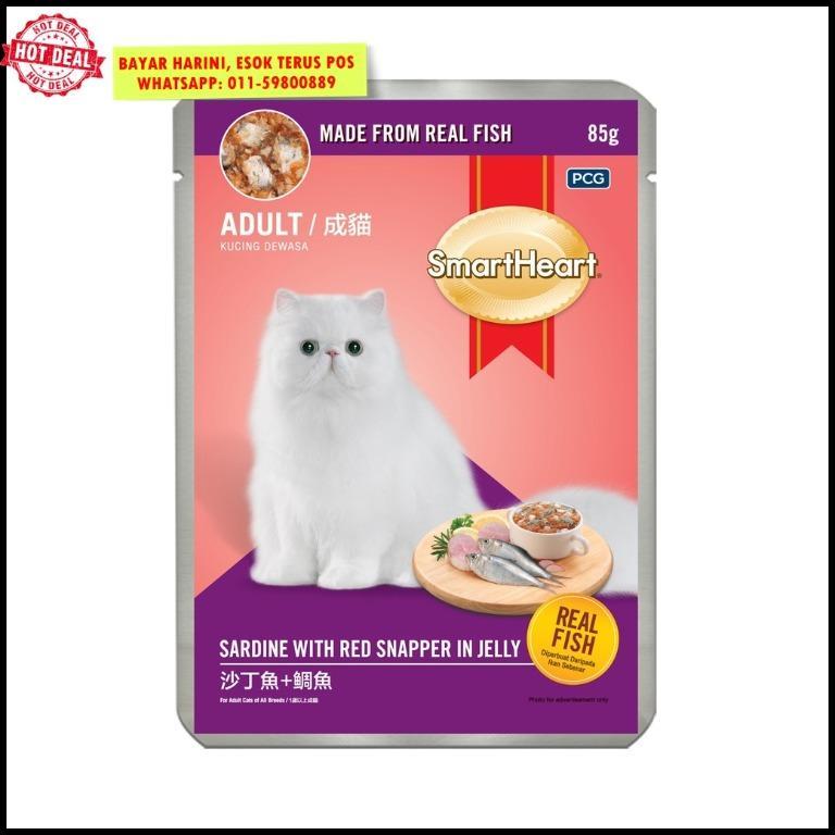 Makanan Kucing Smart Heart Murah Cat Pouch Wet Food Malaysia Pet