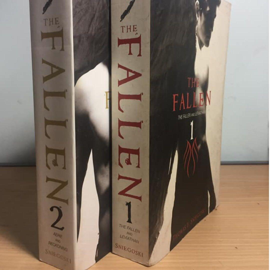 Y.A. Books (P2)   Beautiful Creatures Series, The Fallen Series, Night World Series, Other books