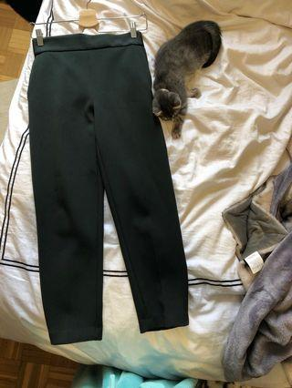 Babaton dress pants