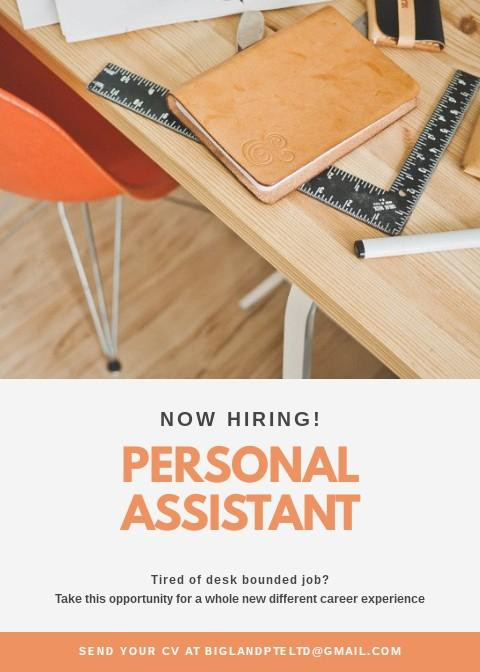 Personal Assistant for Real Estate Agent