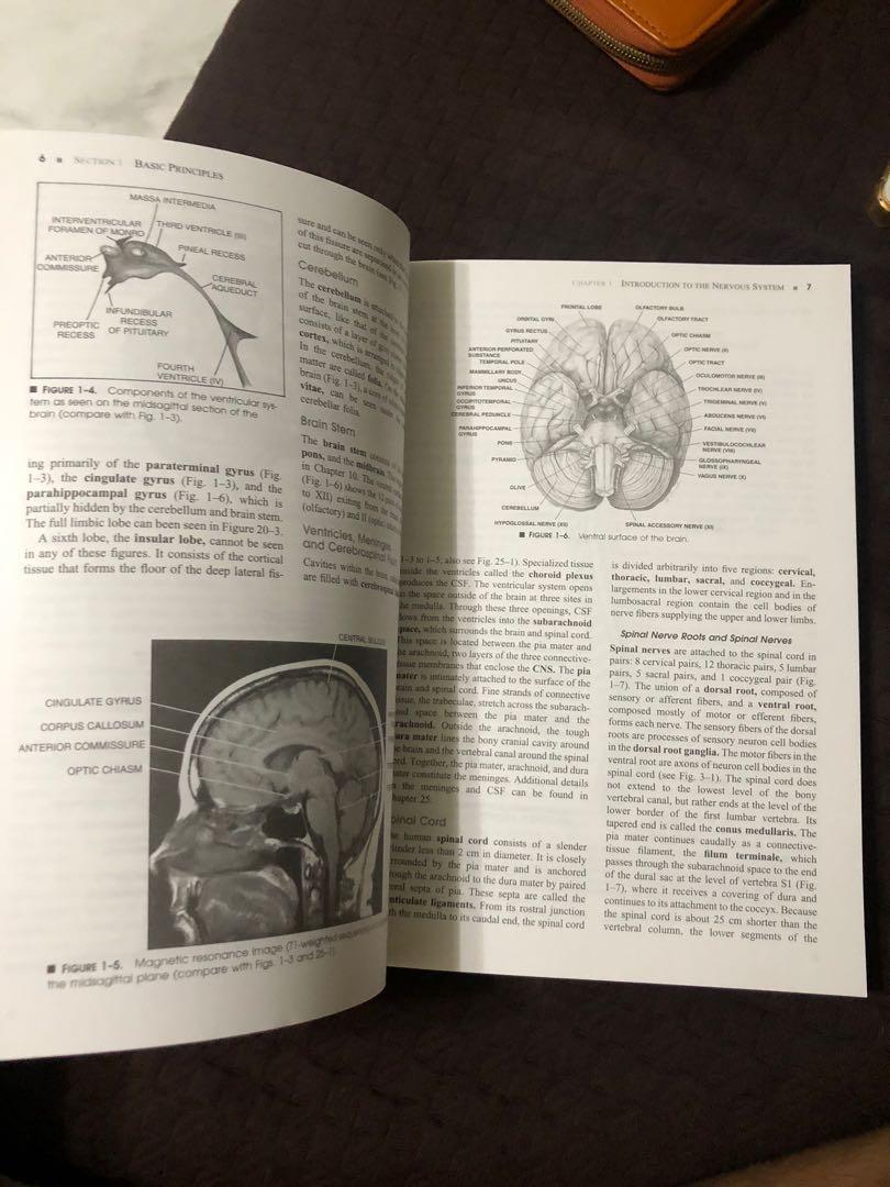 Manter and Gatz's Essentials of Clinical Neuroanatomy and Neurophysiology 10th ed