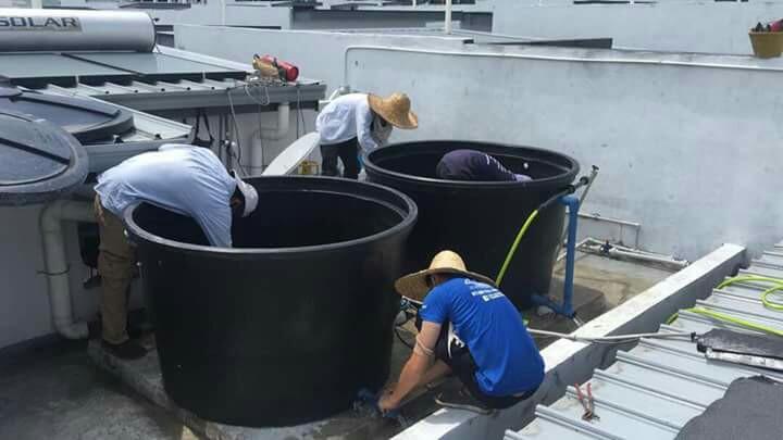0129191588 plumber renovation plumbing tukang paip ) salak tinggi nilai sepang )