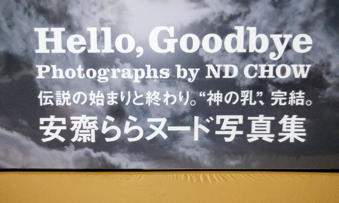 [現貨] RION SHION 宇都宮しをん 安齋拉拉 安齋らら Hello,Goodbye 2014年6月