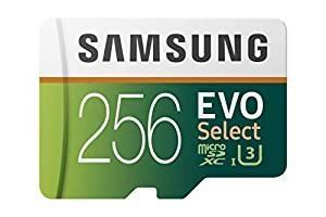 [Cost Price] Samsung Evo 256 GB SD Card