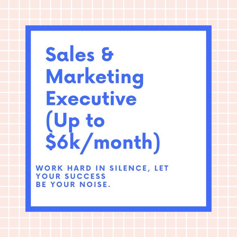 Sales & Marketing Executive (Finance){Up to $6000/month!}
