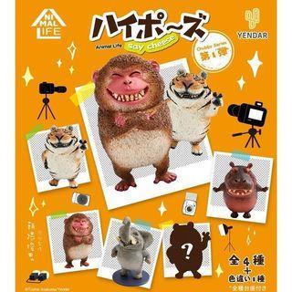 (全新)Animal Life 朝隈俊男 笑嘻嘻 圓滾滾 翻白眼 動物 河馬 公仔 盒玩