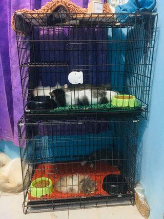 Kandang Lipat kucing/anjing