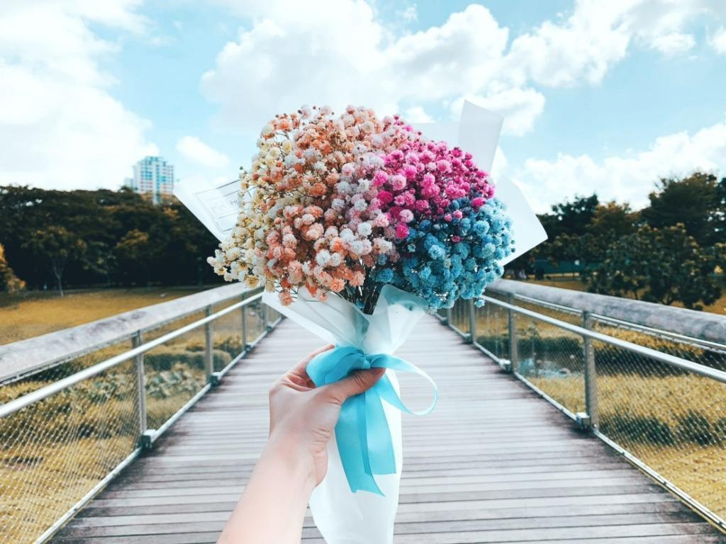 Colorful Baby S Breath Valetine S Day Flower Bouquet Gardening Flowers Bouquets On Carousell