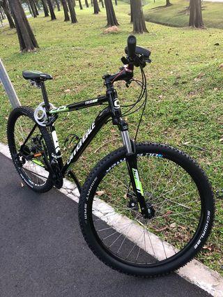 Cannondale mountain bike large size