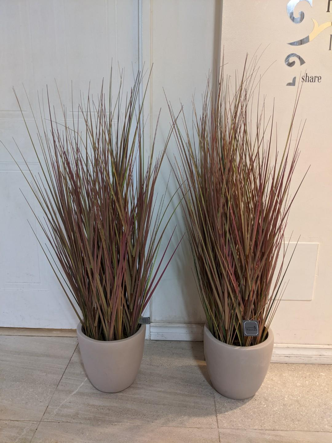 Brand New 4' POTTED FAUX GRASS - Lloyd & Hannah - $30 each