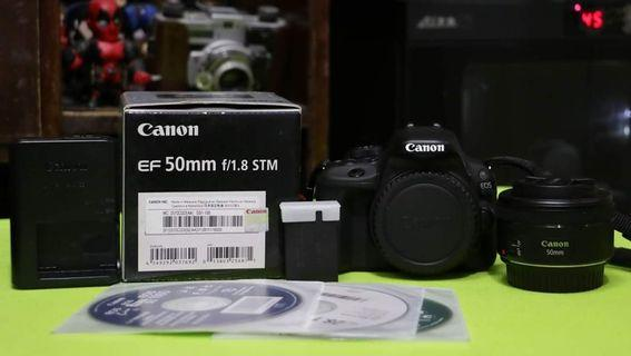 Canon EOS 100d (CMP) with Canon 50mm f1.8 STM Prime lens (CMP).