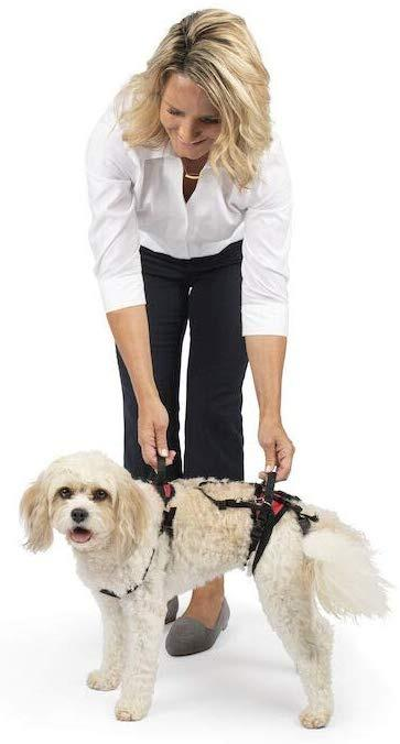 PetSafe Dog Full Body Lifting Aid with Handle Support Harness (Small)