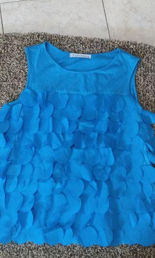 Blue top gingersnaps