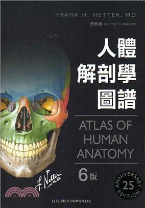 Netters 人體解剖學圖譜