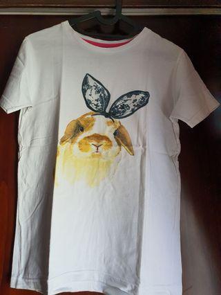 Kaos kelinci
