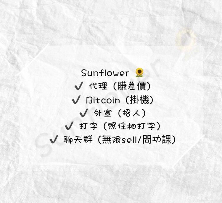 sunflower🌻HK代理