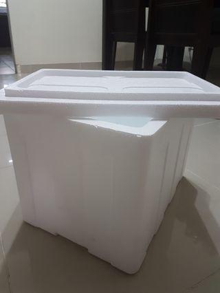 Cooler Box (ice box) 42cm x 30cm