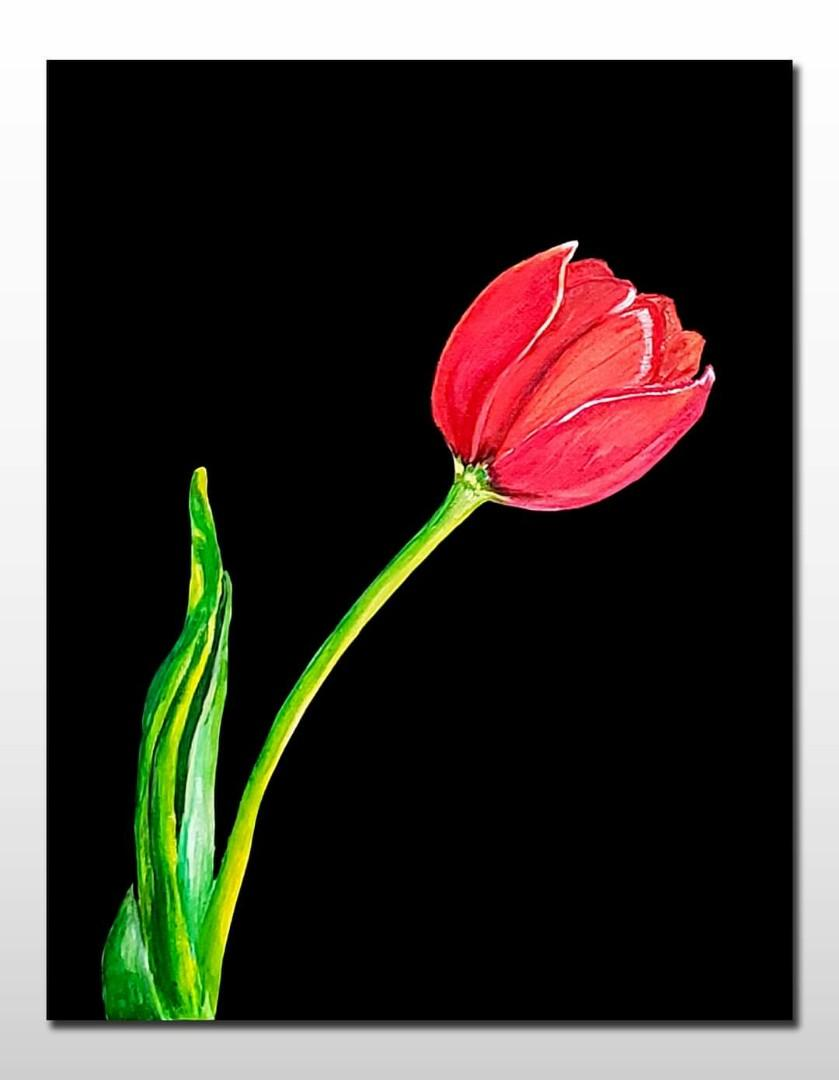 Beautiful Handpainted Canvas Painting