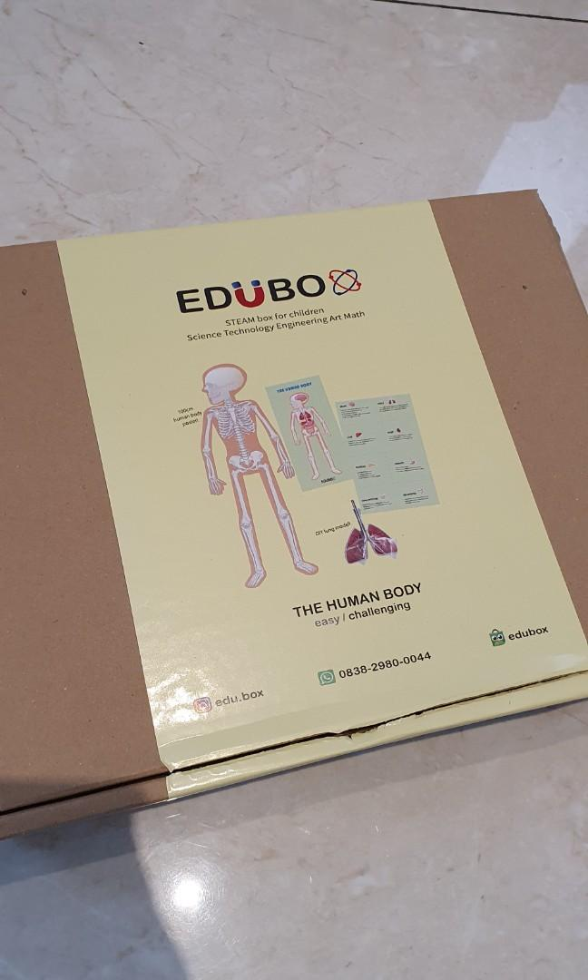 Edubox steam box the human body